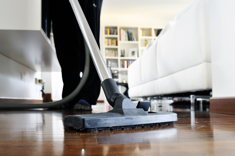 Clean Bed Bugs From Vacuum